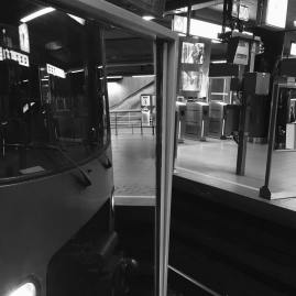 reflected tram